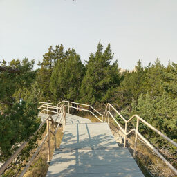 Stair steps leading to the upper viewpoint
