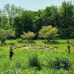 The small pond and metal sculptures in the butterfly garden