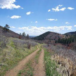 Views from the Powerline Trail as you approach the Elk Valley Trail