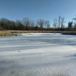 This fun boardwalk across a (frozen) wetland is a nice change of pace