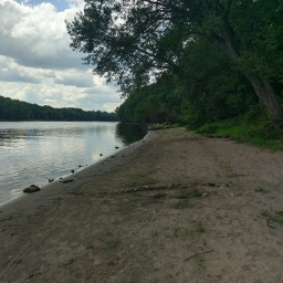 The sandy beach on the Mississippi River