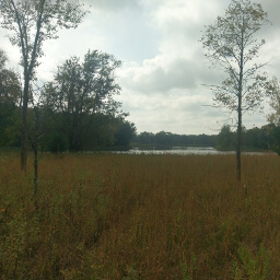 Looking across the meadow to the convergence of the Crow Wing and Mississippi Rivers
