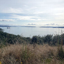 Puget Sound from the Loop Trail