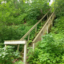 The steep stairs down to the Mississippi River
