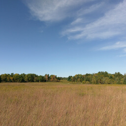 Looking across the prairie with a twinge of fall color