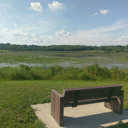 A bench overlooking Lake Katrina in Baker Park Reserve