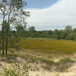 The view from the top of one of the dunes