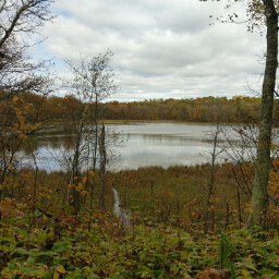 Looking across Lake Erin in fall