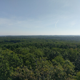 The view from the top of the observation tower on Lapham Peak