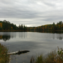 The natural beauty of Pickerel Lake is amazing even on a cloudy day