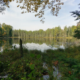 Pine, spruce, and tamarack reflect in this secluded lake