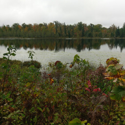 Beautiful fall colors on one of the Twin Lakes