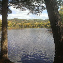 The view of the St. Croix River between the trees