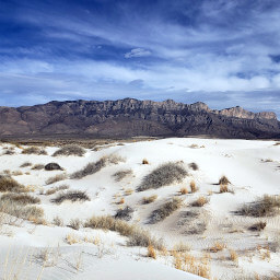 The white gypsum dunes with the Guadalupe Mountains beyond