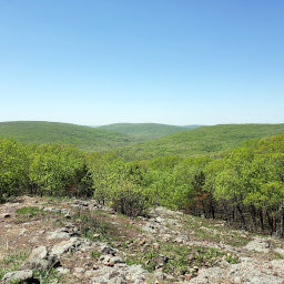 The rolling green Ozarks from a glade on the Mina Sauk Trail