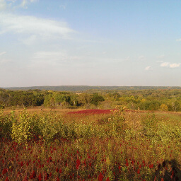 The stunning fall colors viewed from the Prairie Overlook